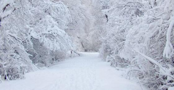 Снегот ќе продолжи да паѓа и утре во Македонија
