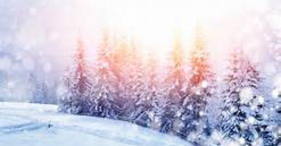 Снегот прави проблеми   забрана на патот кај  Дојран