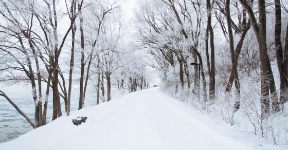 Утрово рекордно ниски температури   каде натрупа најмногу снег