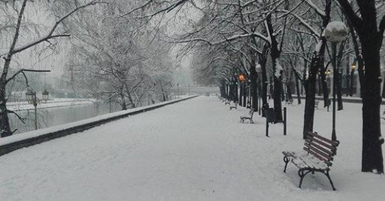 Детска смеа  санки и снешковци   снегот го наполни Градскиот Парк во Скопје