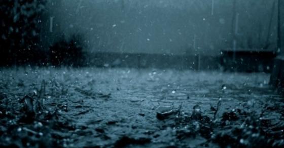 Голем влажен бран  Температурен шок во Македонија среде април
