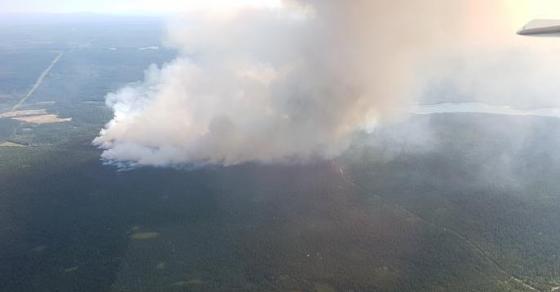 Пожар беснее во регионот   оганот  голта  сѐ пред себе  пожарникарите немоќни