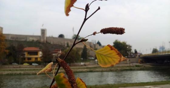 Вистински есенски ден  искористете го бидејќи нема да потрае   еве кога се враќаат горештините