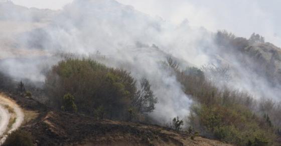 Трескавец се уште во опасност  голем број доброволци се борат со огнената стихија