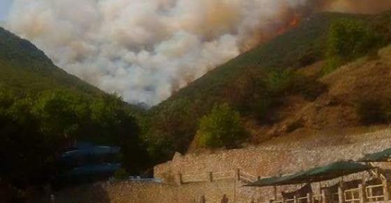 Голем пожар беснее над Валандово   пожарникари и доброволци на терен