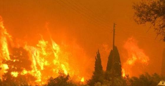 Нови страшни снимки од големиот пожар кај Кондово