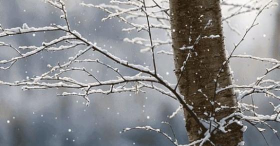 Најстудено во Лазарополе и Маврово   временска за цела недела