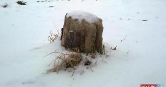 Снег низ Македонија   каде навеа најмногу