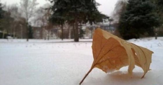 Временска најава за утре   очекувајте дожд и снег