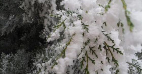 Подгответе се за обилни врнежи дожд  доаѓа и снегот   снежна покривка од 45 сантиметри